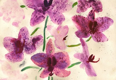 orchids watercolour painting