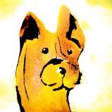 cute yellow dog illustration watercolor
