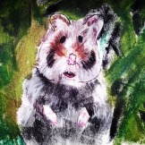drawn illustration lost hamster