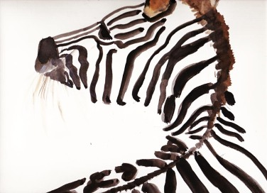 zebra watercolor illustration