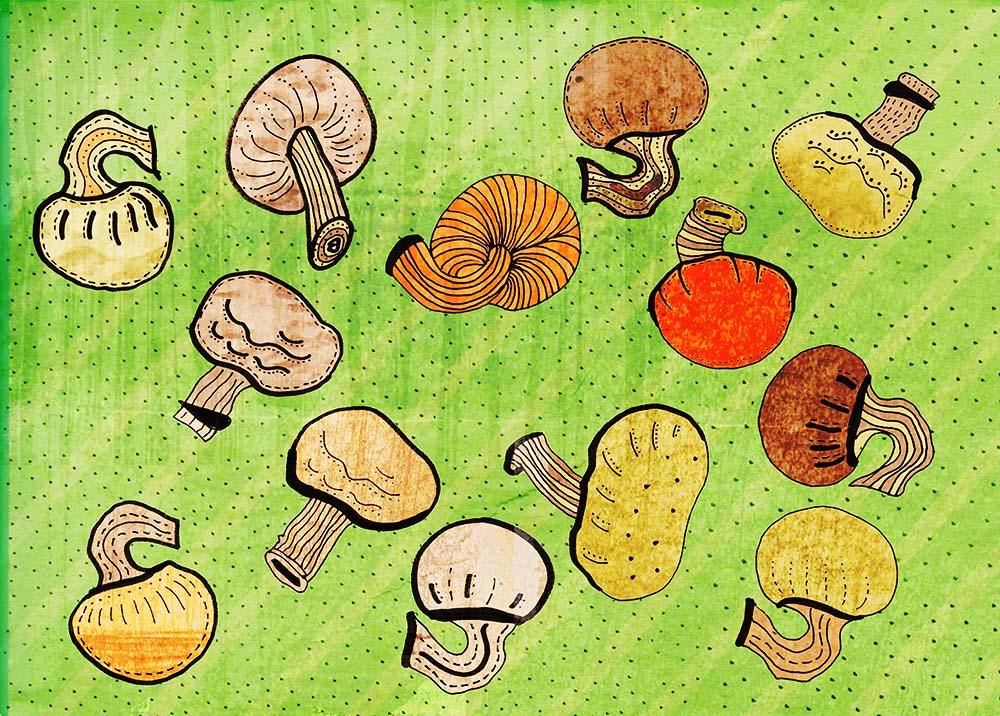 mushrooms textured illustration